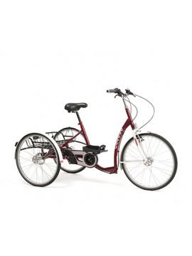 Triciclo LAGOON